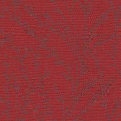 Uni Rot